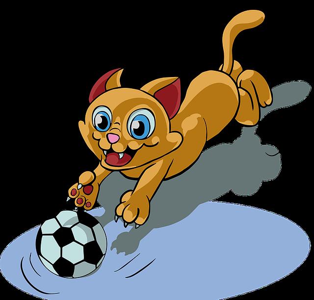 gatto-torneo